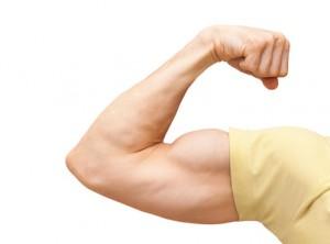 Muskelaufbau Zuhause