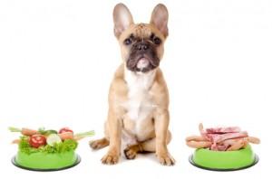 Gemüse oder Fleisch für den Hund
